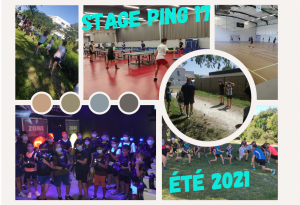 Read more about the article Stage PING 17 – Édition 2021